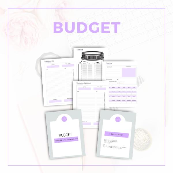 Budget I pdf til download